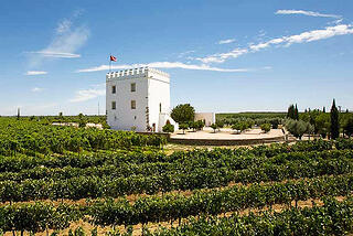 Best_Alentejo_Wineries_Herdade_do_Esporao.jpg