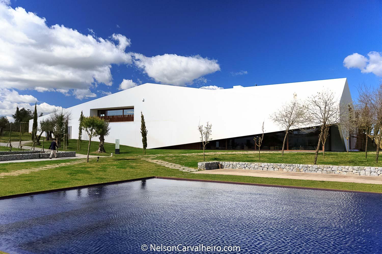 Nelson_Carvalheiro_Alentejo_Wine_Travel_Guide_LAND-13.jpg