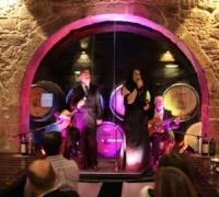 Wine Tour in Porto