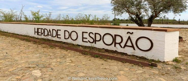 Nelson_Carvalheiro_Alentejo_Wine_Travel_Guide_Herdade_Esporo.jpg