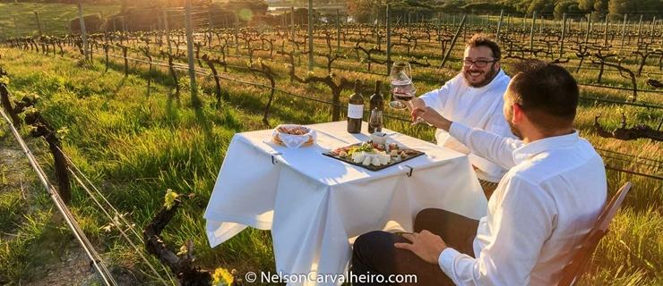 Nelson_Carvalheiro_Alentejo_Wine_Travel_Guide_Herdade_dos_Grous-5.jpg