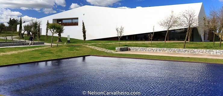 Nelson_Carvalheiro_Alentejo_Wine_Travel_Guide_LAND-13.jpg
