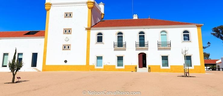 Nelson_Carvalheiro_Alentejo_Wine_Travel_Guide_Torre_Palma.jpg