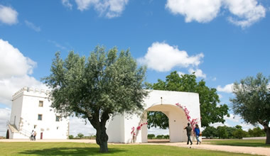Wine Tour in Alentejo