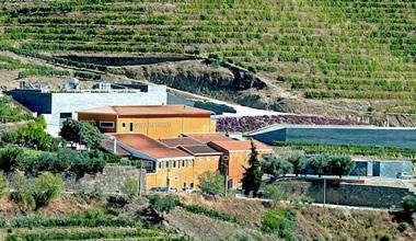 Cultural, Heritage, Wine & Food Tour in Porto & Douro by Marcelo Copello