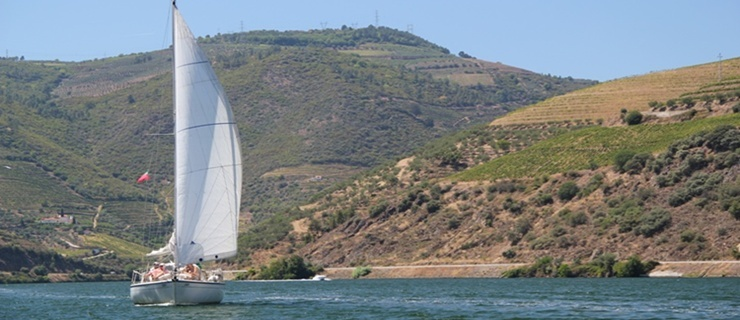 3-day Wine Tour in Douro with a Douro River Cruise
