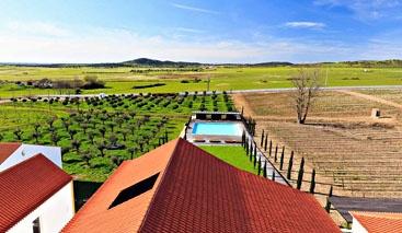 Alentejo Heritage & Wine Tour