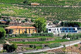 best_douro_wineries_quinta_vallado.jpg