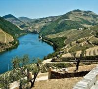 Douro Tour