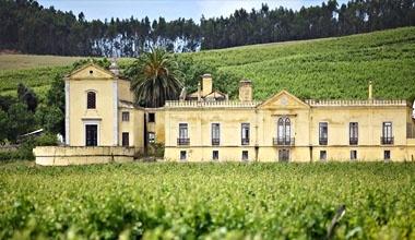 Wine Producing Estates Tour in Lisbon