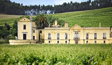 Wine Producing Estates Tour in Lisbon