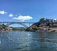 Tour de Grupo Vínico no Porto