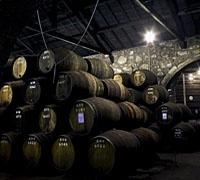 Caves Croft Port Wine Tasting