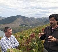 Douro Valley Group Tour