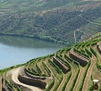 douro_valley_tour_carvalhas_popa.jpg