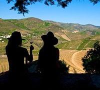 Tour Vínico no Douro