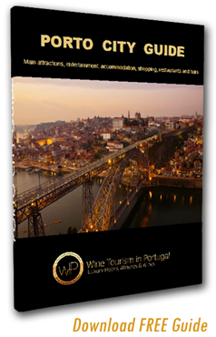 Porto City Guide Download