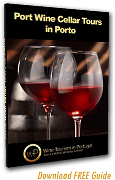 Port Wine Cellar Tour Guide Download