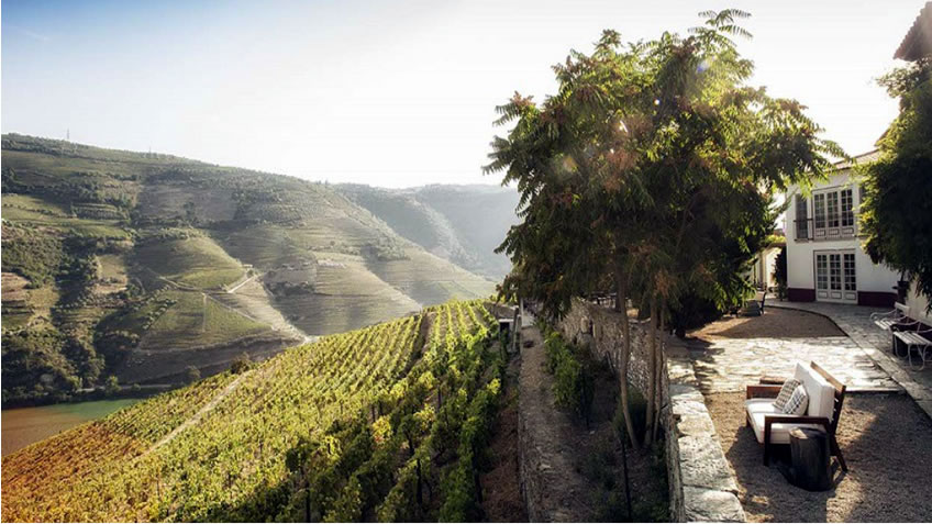 7-Day Luxury Tour in Porto and Douro