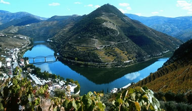 1-Day in the Douro Wine Region with Lunch in The Vineyard